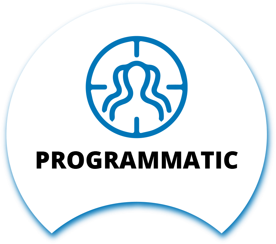 DSP Management (Programmatic Buying)