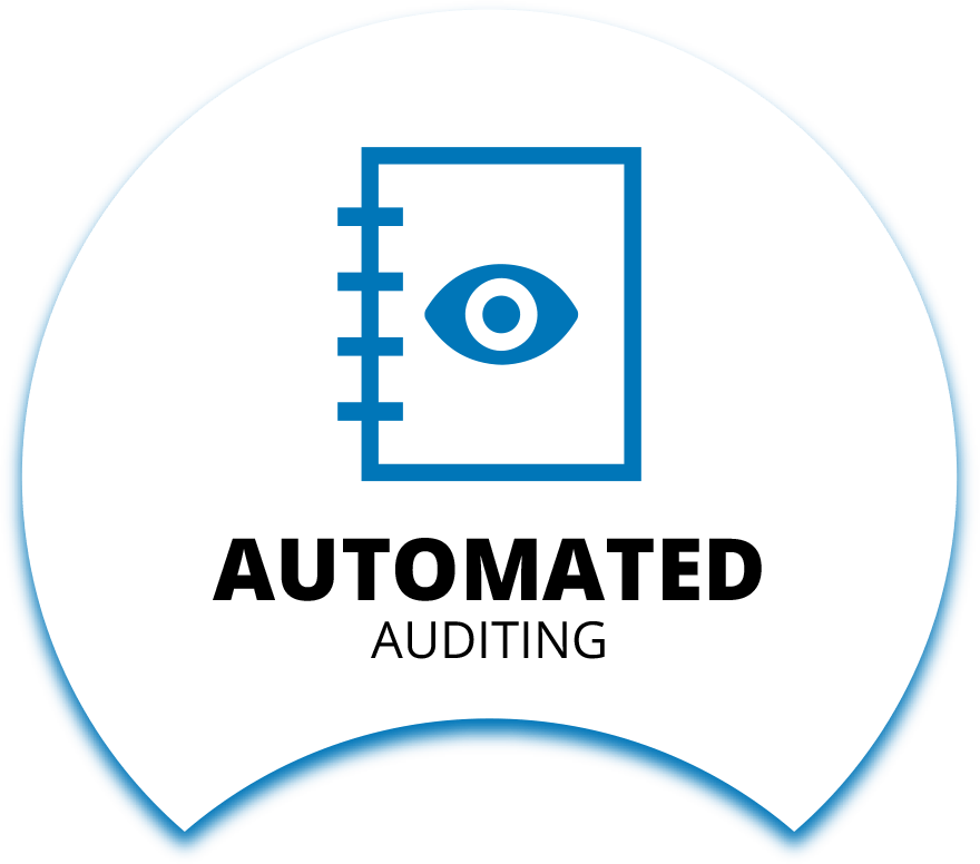 Automated Auditing